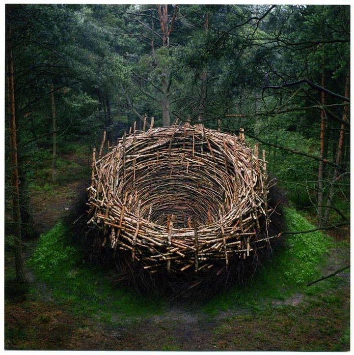Twenty unforgettable pieces of land art. Nest by Nils-Udo