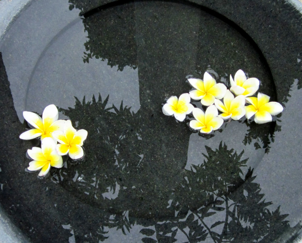 Floating blossoms in a marble bowl in the garden of the Muang Kulaypan, Samui. Photo: the art resort.