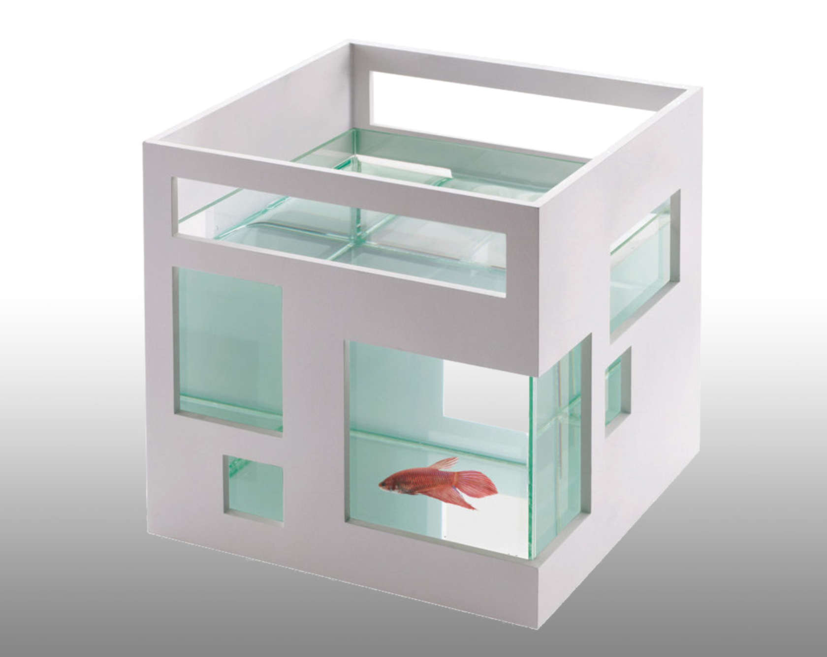 """Umbra Fish Hotel Fish Bowl  This fish bowl was modeled after a """"contemporary condominium,"""" with sleek white walls and asymmetrical windows. Image SkyMall"""