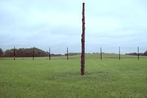 Illinois Woodhenge