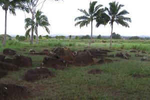 Kukaniloko Birthing Site